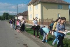 gimnazial1
